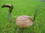 picture of COCONUT BIRD - MEDIUM