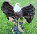 picture of AMERICAN BALD EAGLE - LARGE