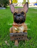 picture of FRENCH BULLDOG STATUE FIGURINE BULLDOG STATUE