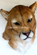 picture of MOUNTAIN LION HEAD WALL MOUNT STATUE