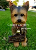 picture of YORKIE YORKSHIRE TERRIER STATUE YORKIE FIGURINE