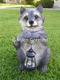 picture of RACOON WITH SOLAR LIGHT