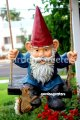 picture of GNOME ON SWING
