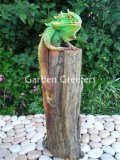 picture of IGUANA ON LOG