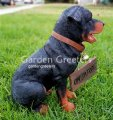 picture of ROTTWEILER STATUE ROTTWEILER FIGURINE
