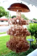 picture of LARGE AMBER CAPIZ WIND CHIMES